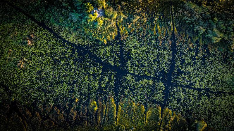 Aerial Art
