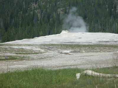Aiden's Yellowstone Pictures and Videos
