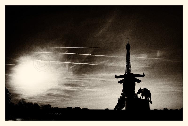 20150413_Trocadero_0206-BW.jpg