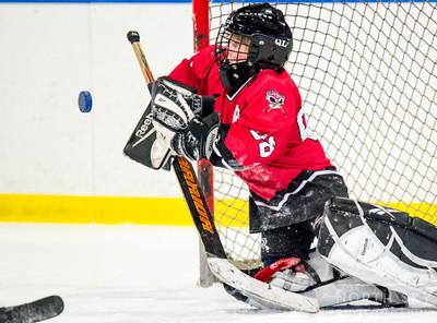 Putnam Hockey Jamboree 2/14/15