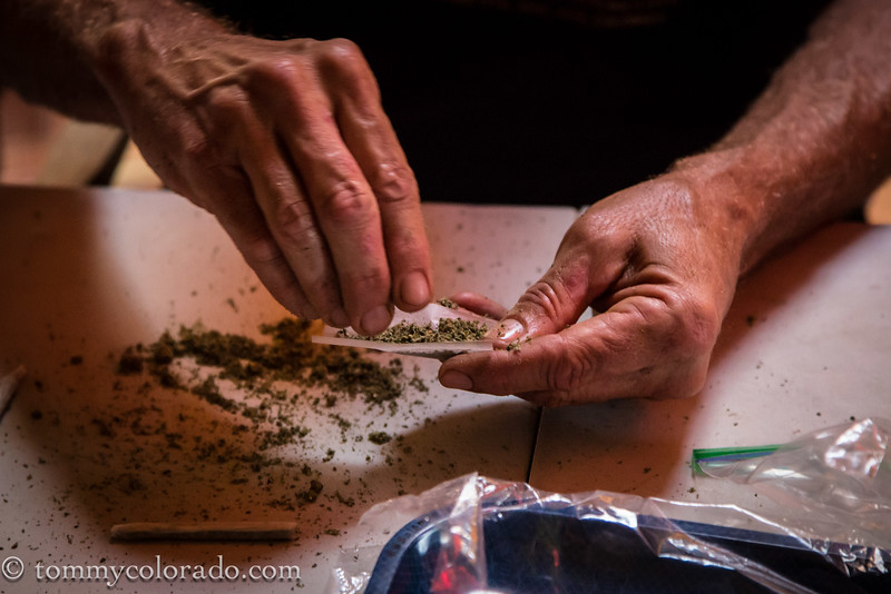cannabiscup_tomfricke_160917-2321.jpg