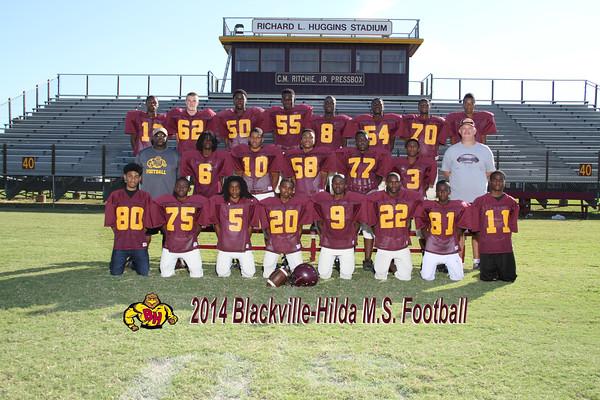 2014 Football MS