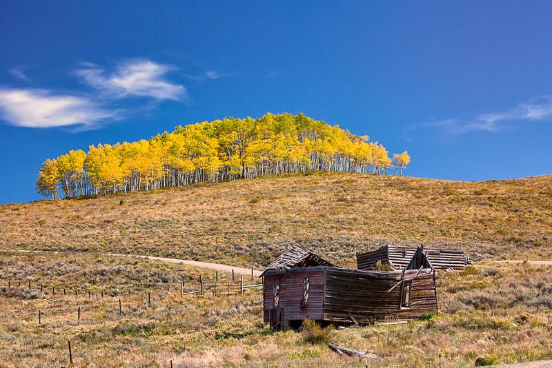 Colorado Color-27.jpg