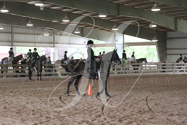 Saddleseat Equitation 10 - 13