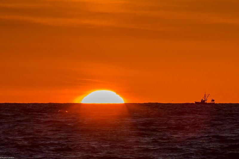 Sailing into the Sun.jpg