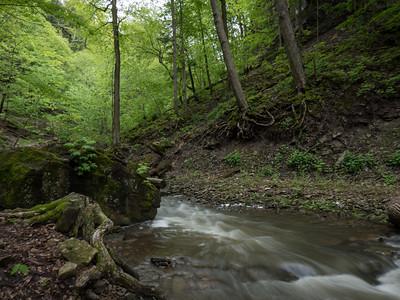 Waterfalls of Hamilton