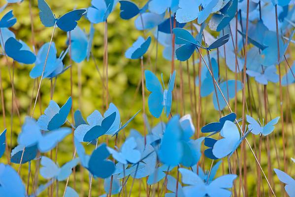 Jardin bleu d'Absolem