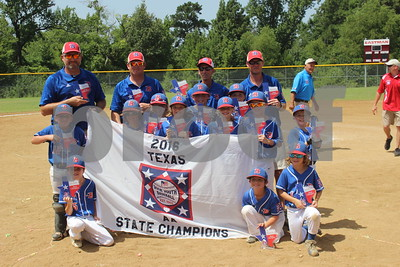 bullard-u8-baseball-team-wins-state-title-heading-to-nationals