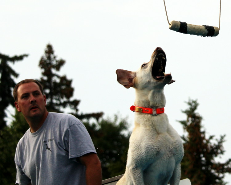 Dock Dogs at Fair-114.JPG