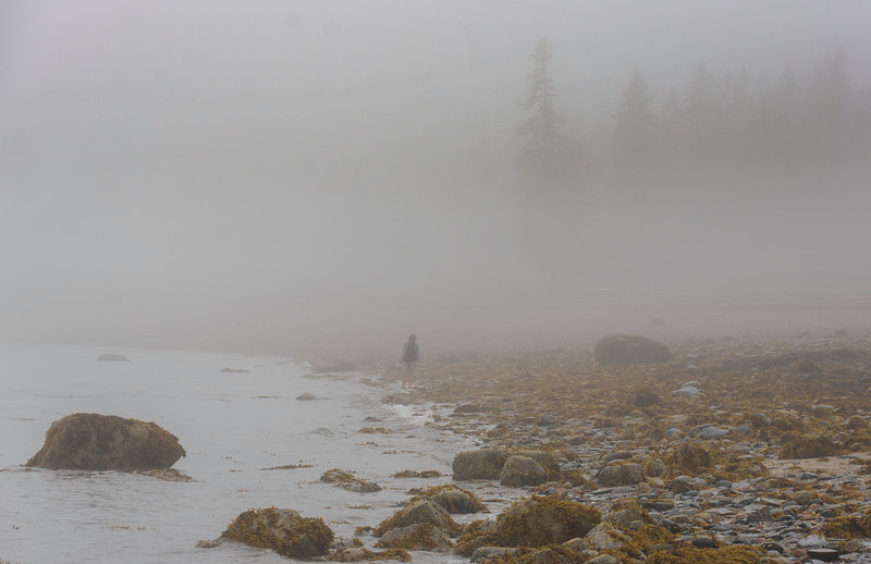 Dawn-beach-combing-fog.jpg