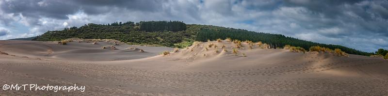 Sand dune Lake Wainamu Bethells