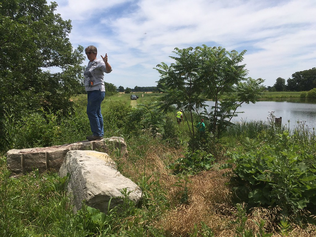 . Richard Payerchin - The Morning Journal <br> Lyn Ickes, watershed specialist in the Lorain County Community Development Department, stands atop one of the earthen moguls, or mounds, created to be a viewing platform at the Margaret Peak Nature Preserve on June 28, 2017. The Eaton Township preserve is a hidden gem for birders, hikers and anyone who wants to experience the outdoors.
