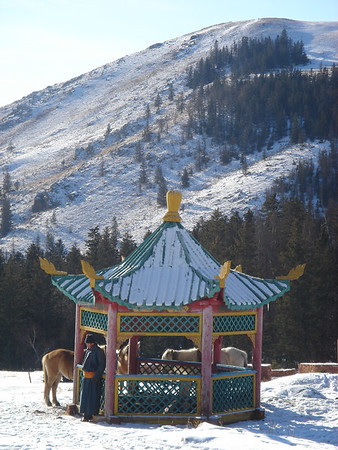 """Soyombo to nowhere: """"Yaks are our chief delivery mode in Central Asia"""" (Siberia and Mongolia)"""