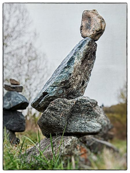 Dodo Rock Bird