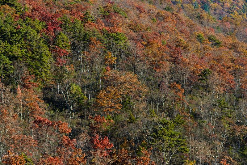 2012-10-21 at 14-17-22.jpg