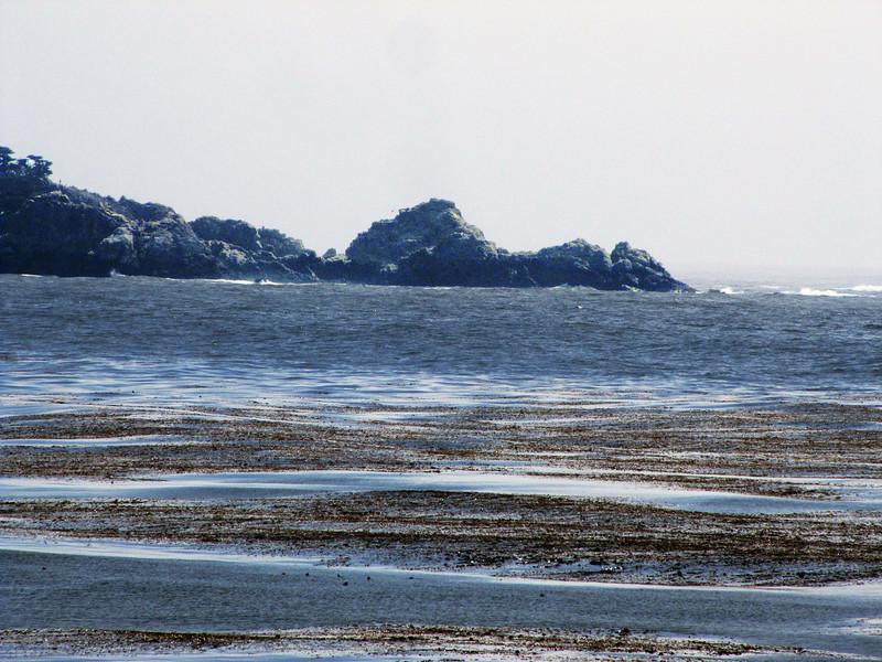 36-Swells, Carmel City Beach_4741.jpg