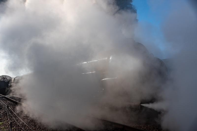 Steam Drama-4.jpg