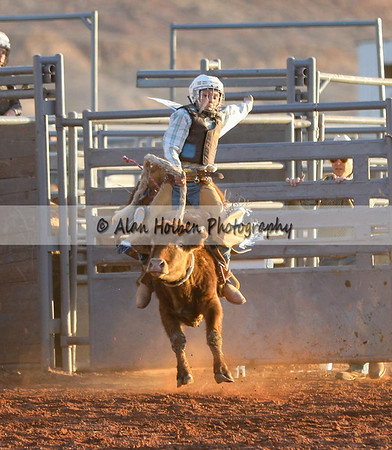 Friday - Jr High - Saddle Bronc Steer