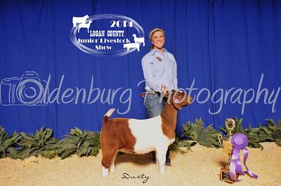 Logan County  Jr Livestock Show