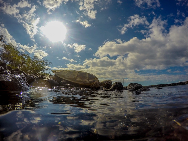 GoPro Shots and Video Grabs