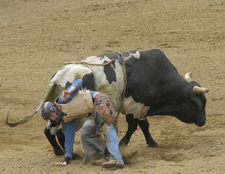 Coombs Ballarama 2008-3-107A.jpg