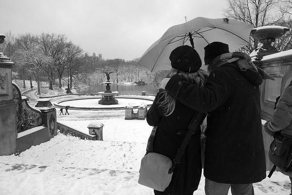 2013-03-08 - Central Park Snow scene