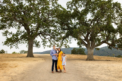 08/13/21 Los Altos Oaks Trees Short Stories