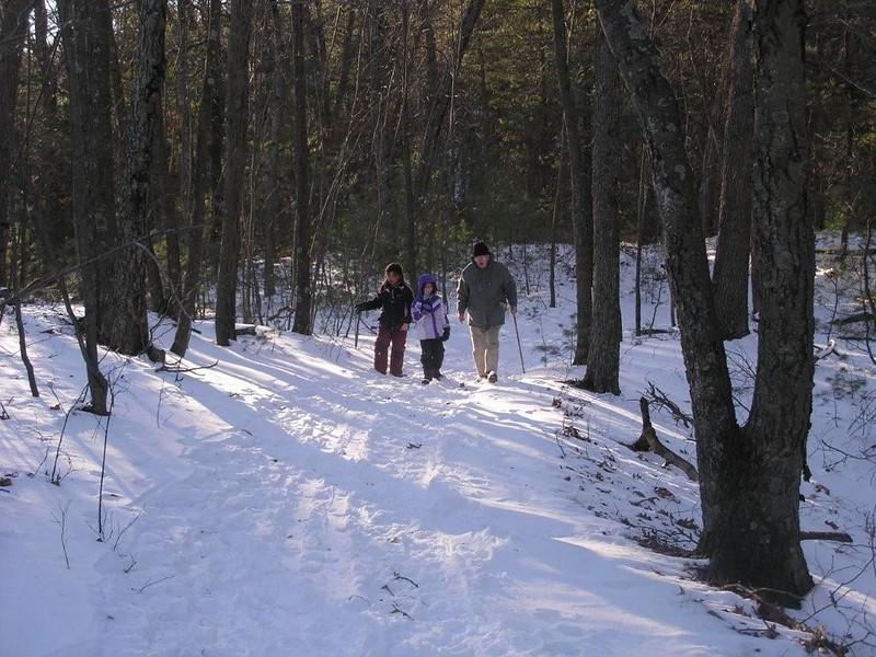 kayla, hailey, harry walking in woods 1 09.jpg