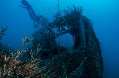 Batt Reef Wreck