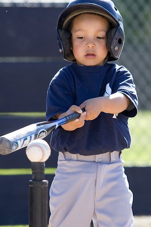 T-Ball Yankees