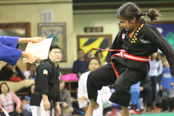 Semi-Black Belt Test, December 6, 2014
