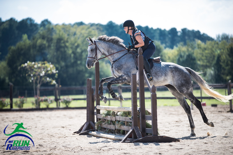 2017 Horse Comp