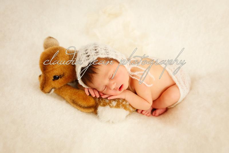 Ella Corleen's Newborn Portraits
