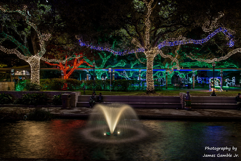 Houston-Zoo-Lights-2985.jpg