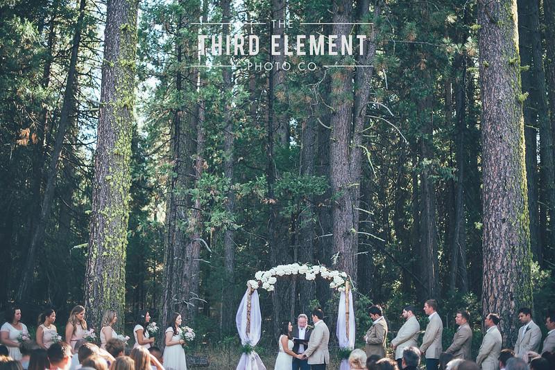 Third Element Photo Co Brittney + Errol Yosemite Wedding Hetch Hetchy San Francisco_0013.jpg