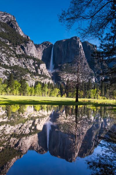 Yosemite Day 2-5775.jpg