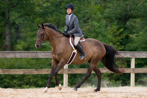 118-119 Senior Equitation