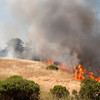 CONTROLLED BURN AT RUSSIAN RIDGE OPEN SPACE PRESERVE