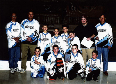 Roller and Ice Hockey in Lexington - looking back