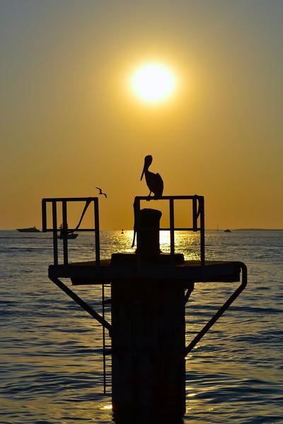 Key West/FL - Mar., 2013