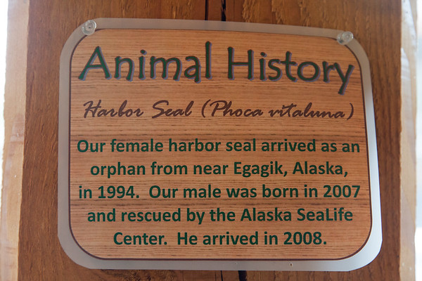 Anchorage, Alaska - 2010