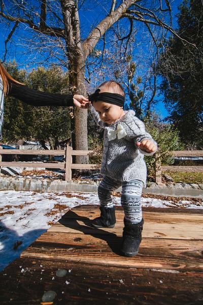 Ilene Daniel & Issis Family Photos in Oak Glen-0328.jpg