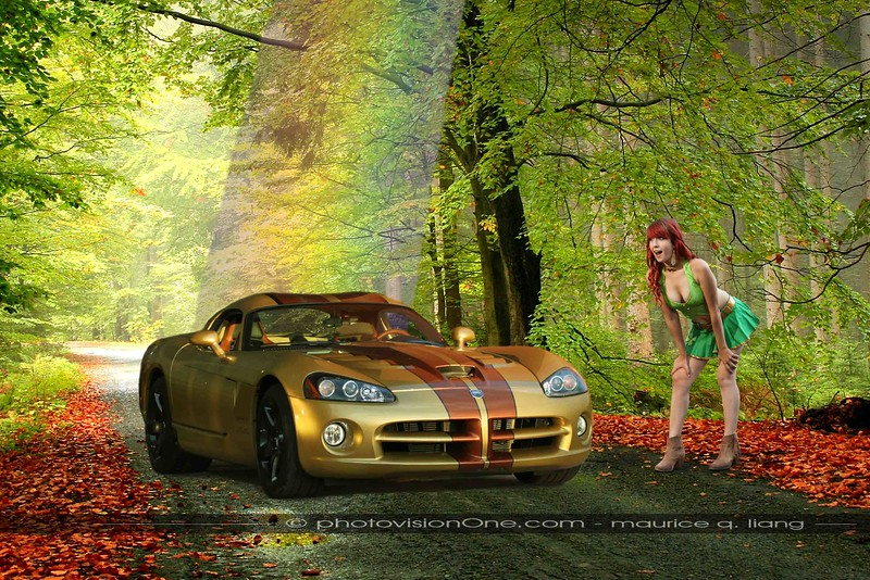 Gold At the End of the Rainbow.  2010 Viper SRT10.  Model: Dana