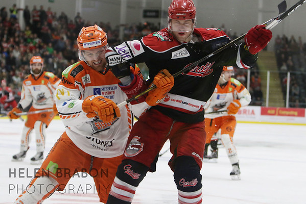 Cardiff Devils vs Sheffield Steelers 17-12-16