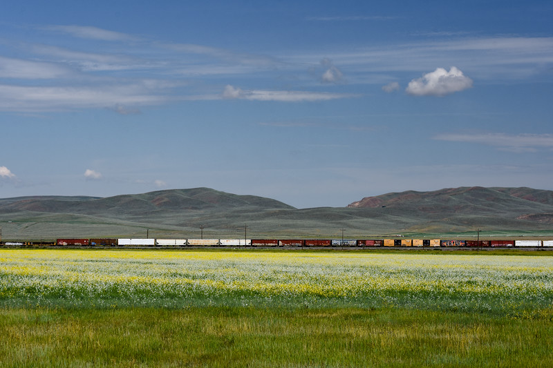 Mustard-fields-train-Wyoming-southofTetons.jpg