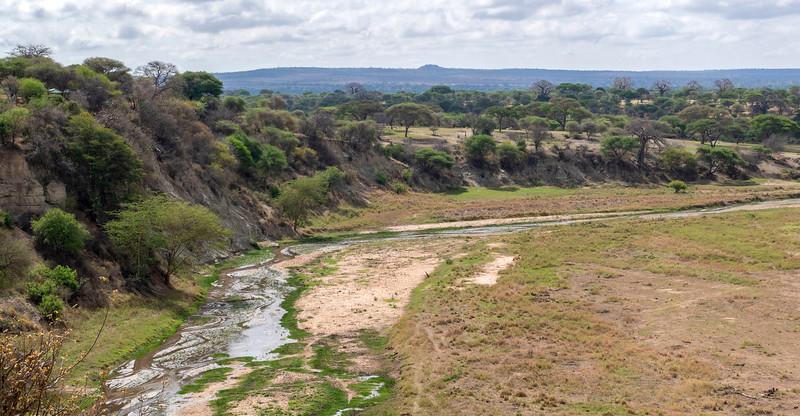 Tanzania-Tarangire-National-Park-Safari-09.jpg