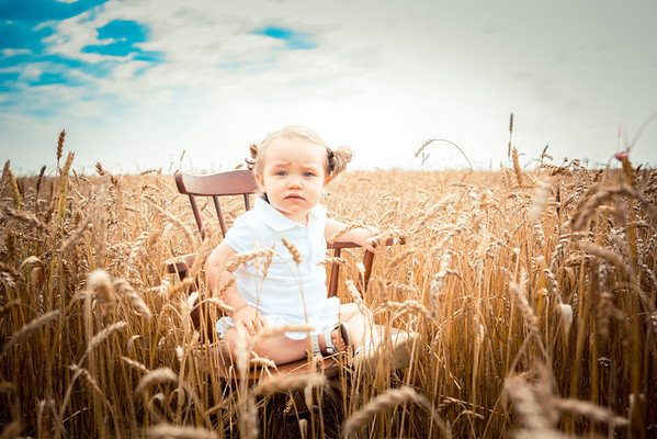 Marley in dadda's wheat field