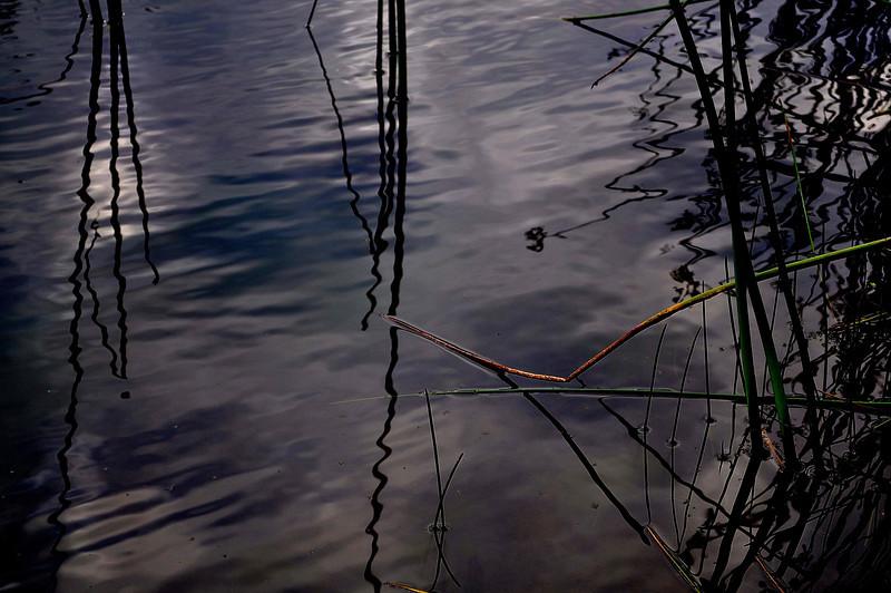 written on water 7-3-2012.jpg