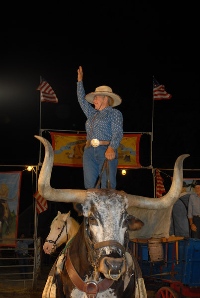 Windham Ranch Show at Marshfield MA Fair
