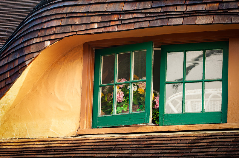 Flowers in Window 2, Ainsley House, Campbell, California, 2010
